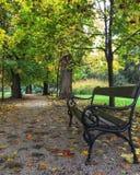Geniet van de herfst Royalty-vrije Stock Foto's