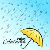Geniet van de herfst onder paraplu Royalty-vrije Stock Foto