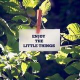 Geniet van de Kleine Dingen Stock Foto