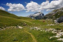 Geniet van de Pyreneeën Stock Afbeeldingen