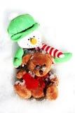 Geniet van de winter Royalty-vrije Stock Fotografie