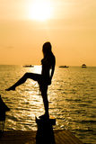 Geniet van de zonsondergang Stock Afbeeldingen