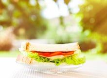 Geniet van een evenwichtige lunch royalty-vrije stock fotografie
