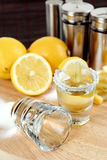Geniet van uw tequila Royalty-vrije Stock Fotografie