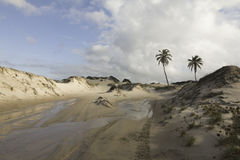 Genipabu Dunes in Natal, RN, Brazil. Genipabu or Jenipabu is a beach with a complex of dunes, a lagoon and an environmental protection area APA located close to Stock Image