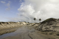 Genipabu Dunes in Natal, RN, Brazil Stock Photography