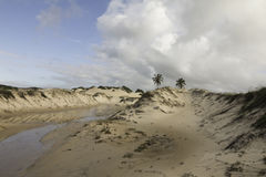 Genipabu Dunes in Natal, RN, Brazil. Genipabu or Jenipabu is a beach with a complex of dunes, a lagoon and an environmental protection area APA located close to Royalty Free Stock Image