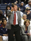 Geno Auriemma. University of Connecticut women's basketball coach Geno Auriemma during a basketball game Stock Images