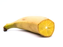 GenoBanan Royalty Free Stock Photography