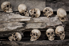 Genocide Stock Photo