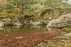 Genoese Brücke über einem Fluss in Korsika Lizenzfreie Stockfotografie