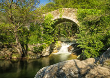 Genoese bridge and cascade near Feliceto in Corsica Stock Image