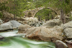 Genoese bridge over Tartagine river in Corsica Royalty Free Stock Photo