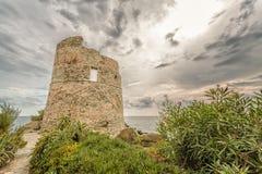 Genoese torn på Erbalunga på Cap Corse i Korsika Arkivfoto