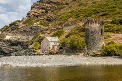 Genoese torn på Negru på Cap Corse i Korsika Arkivfoton