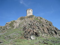 Genoese tower, Corsica Stock Images