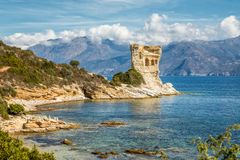 Genoese tower at Mortella near St Florent in Corsica. Ruins of the Genoese tower at Mortella with a turquoise mediterranean sea and rocky coastline of the Desert royalty free stock photos