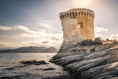 Genoese tower at Mortella near St Florent in Corsica. Ruins of the Genoese tower at Mortella beside the mediterranean sea on the rocky coastline of the Desert royalty free stock image