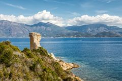 Genoese tower at Mortella near St Florent in Corsica. Ruins of the Genoese tower at Mortella beside the mediterranean sea on the rocky coastline of the Desert stock photo