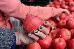 Genom att välja äpplen på marknaden Royaltyfri Foto