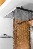 Genomblöt dusch Royaltyfri Fotografi