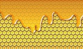 genomblöt honung stock illustrationer
