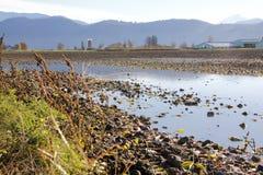 Genomdränkta Washington Farm Land Royaltyfri Fotografi