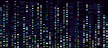 Genomic analysvisualization Dna-genom som ordnar, den deoxyribonucleic syrliga genetiska översikten och genomföljden analyserar vektor illustrationer