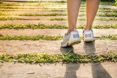 genomkörare för kvinna för wellness för soluppgång för running sko för löpare för väg för jog för kondition för closeupbegreppsfo royaltyfria foton
