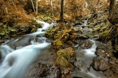 Genomskärning av två bergfloder Royaltyfri Foto