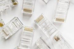 Genomskinlig bakgrund för kontaktdon för Ethernetinternet rj-45 på vit Fotografering för Bildbyråer