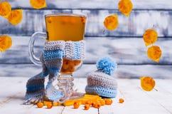 Genomskinlig drink för havsbuckthorn royaltyfria bilder