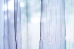 Genomskinlig gardin på fönster Royaltyfria Bilder