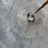 Genomskinlig hjärta på en grov yttersida av den red ut stämpeln med cirklar av gammalt trä och en spricka Perfekt valentin kort f royaltyfria foton