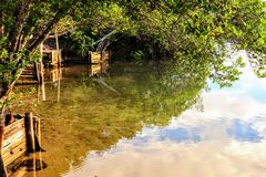 Genomskinlig Jacuipe flod i morgonen Arkivfoto