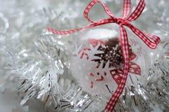Genomskinlig jul klumpa ihop sig med kottar och snöflingor inom Arkivfoton