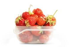 Genomskinlig plast- ask med röda mogna jordgubbar Arkivbild
