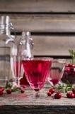 Genomskinlig röd drink Fotografering för Bildbyråer