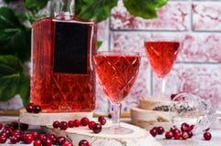 Genomskinlig röd drink royaltyfri foto