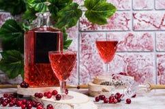 Genomskinlig röd drink arkivfoto