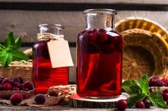 Genomskinlig röd drink av bär Royaltyfri Foto