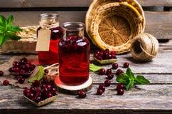 Genomskinlig röd drink av bär Fotografering för Bildbyråer