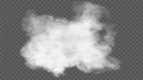 Genomskinlig specialeffekt står ut med dimma eller rök Vit moln, dimma eller smog royaltyfri fotografi