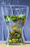 Genomskinlig vas för exponeringsglas med torra dekorativa blommor, frukter, växter fotografering för bildbyråer