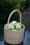 Genomskinliga Blanche äpplen i korg Arkivfoto