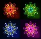 genomskinliga ljusa blommor för abstrakt bakgrund Royaltyfria Foton