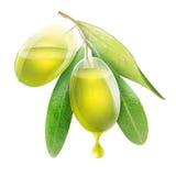 Genomskinliga oliv med olja Arkivfoto