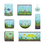 Genomskinligt akvarium som isoleras på för livsmiljöaquarian för vit fisk illustration för vektor för bunke för behållare för hus vektor illustrationer