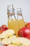 genomskinligt för glass fruktsaft för bild för mat för äpplen för äpple 3d begreppsmässigt fallande naturligt Royaltyfri Fotografi
