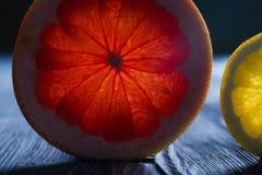 Genomskinligt snitt av en mogen citrus grapefrukt och citron mot ljus Royaltyfri Foto